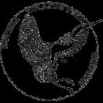 biodanza-logo0-uff-800px